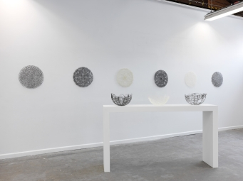 Halpin_Ursula_Image_3_I see though the glass darkly_install view_ 2016